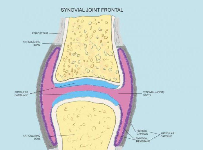 Liigeste ja sidemete tooriistad Artrisa balneoloogiline ravi