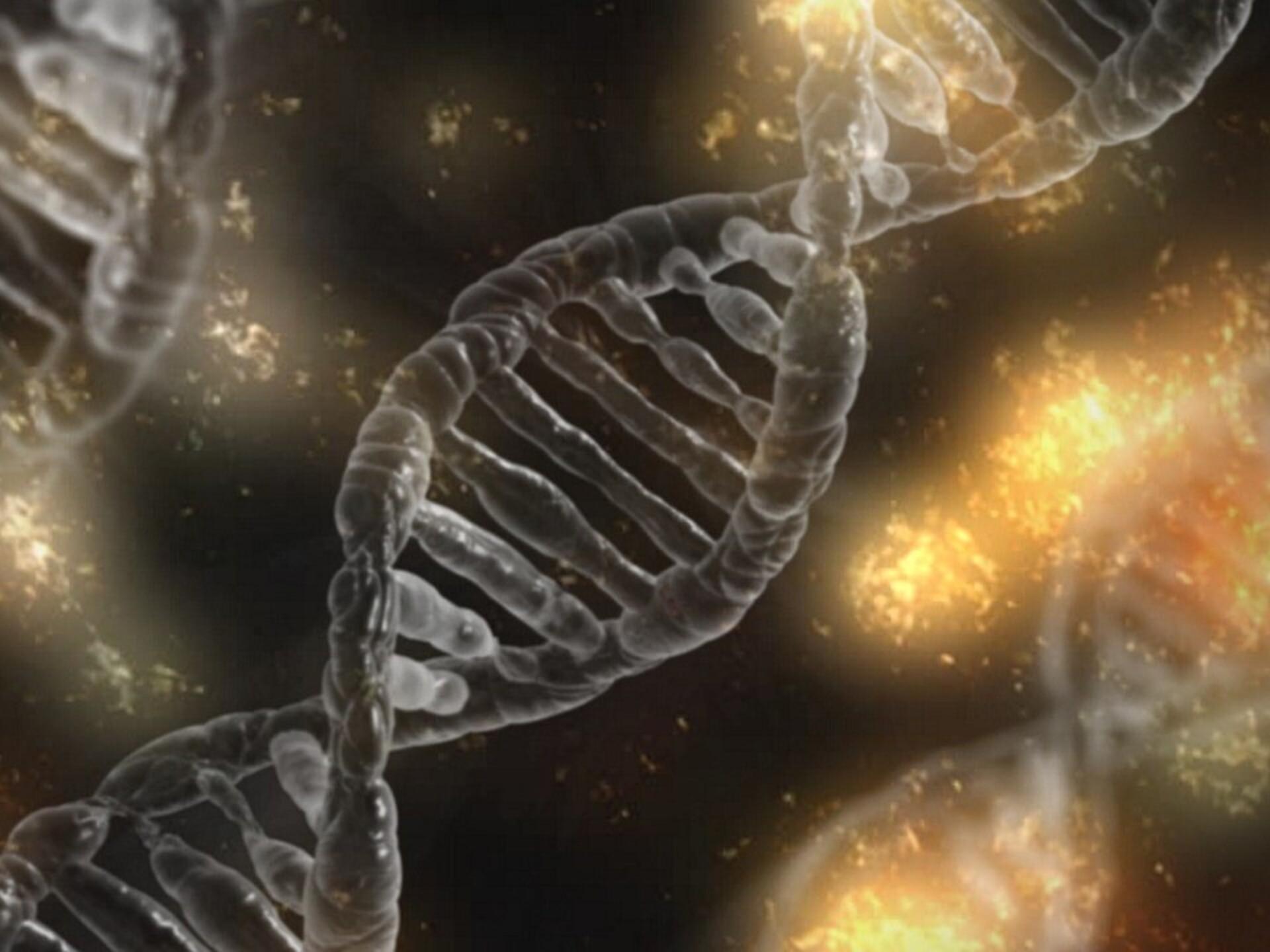 Teaduse uurimine liigeste haiguste uurimine