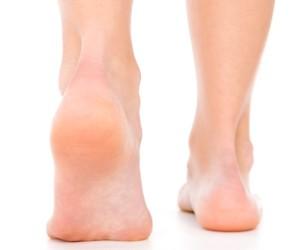 Miks valutab harja jalad