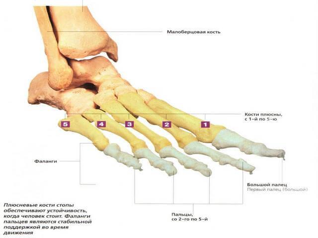 Haiget kolmandale sormele valus liigesed sormede ja olgade