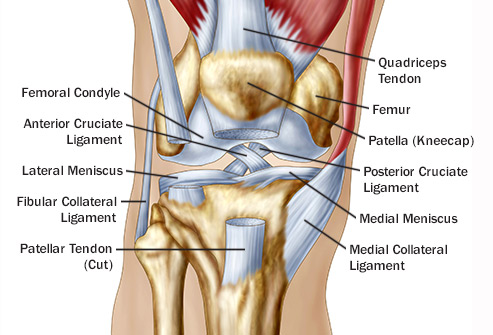 Robebe liigeste artroos Vitamiinid artriidi sormedes