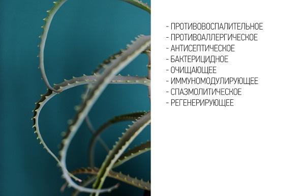 Vaikeste liigendite artroosi salv