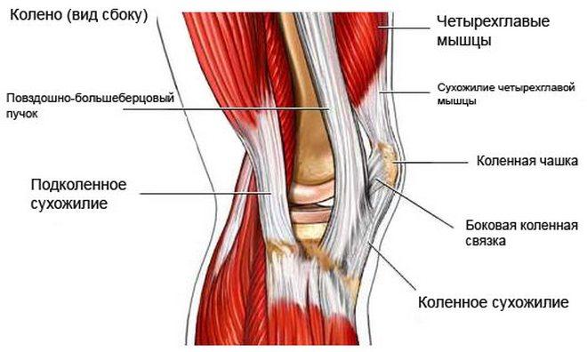 Osteokondroosi ja artroosi ravi