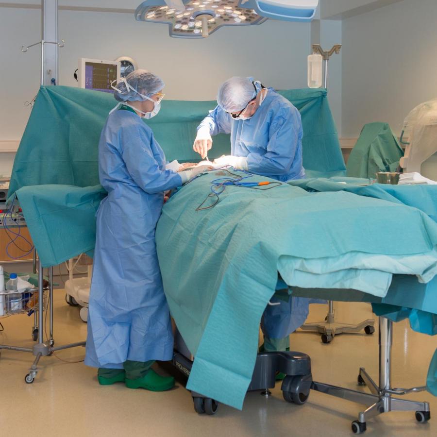 Kirurg haiged polved