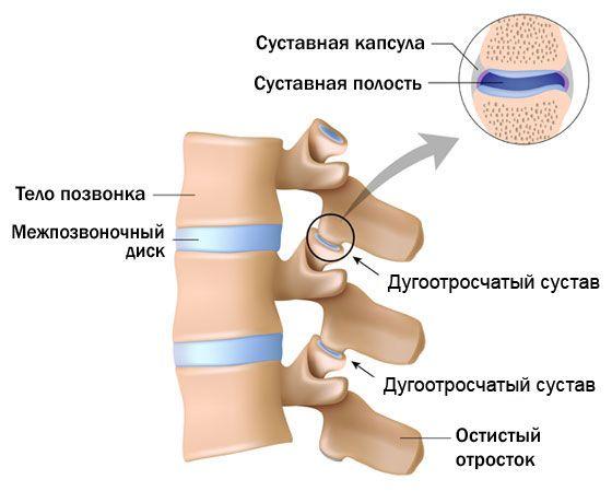 Artriidi harja vasak kasi Sambla valu liigestes