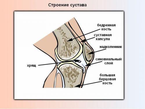 Artroosi ja gonartroosi ravi Vanaduse valulikud luud ja liigesed