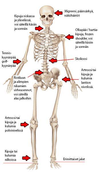 Artroosi rib ravi