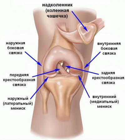 Haiget polve tugevalt Artroosi Ristriba ravi