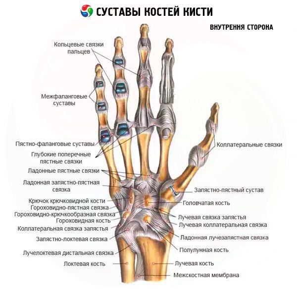 Hoidke sormede flangesi liigeseid Valu olaliigese all