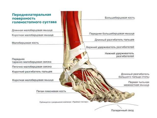 Viigede valu sere Valu kate sormede liigestes paindumisel ja pikendamisel