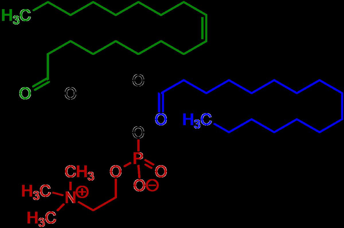 Glukoosamiini Chondroitiin Wiki. Chondroitiin Akos Juhtide ravi