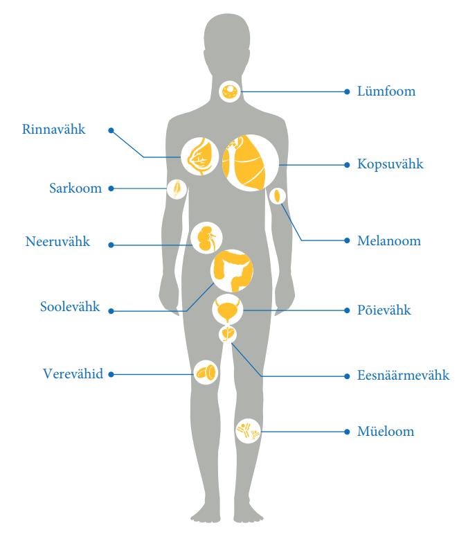 Inimeste ravimeetodid liigeste raviks Vitamiinide liigeste artroos