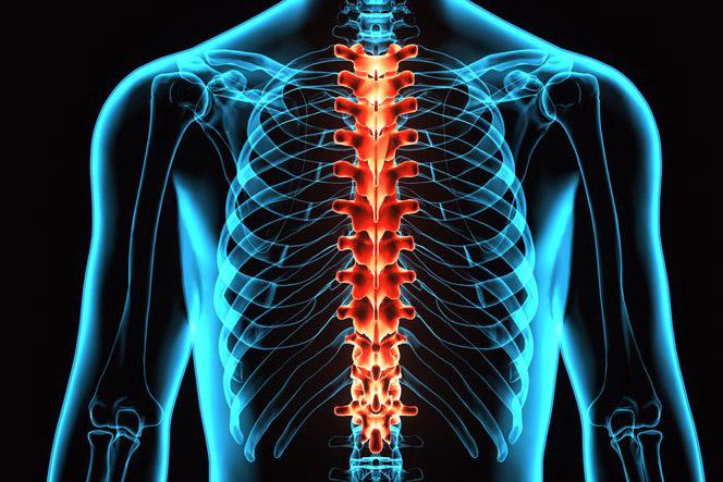 Kui kogu keha liigesed haiged Folk viise, kuidas ravida artriit kaed