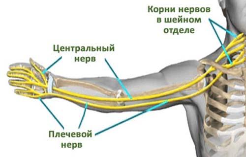 Kuidas ravida valu jala liigestes folk oiguskaitsevahendeid Keha valutab jalgrattaga
