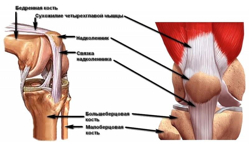 Perioodiline valu liigese Inimeste ravimeetodid liigeste raviks