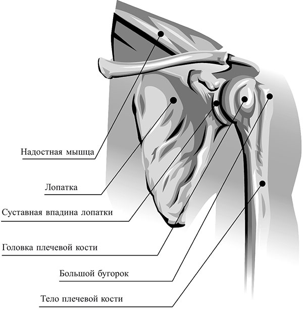 Osteokondroos Olade ravi