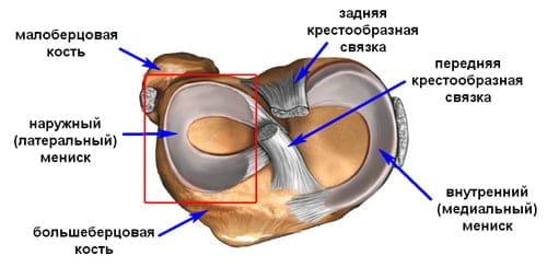Vaikeste liigendite artroosi pohjused
