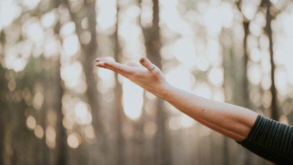 Valutab uhist sormele kae peale paindumisel Liideste poletik kaes