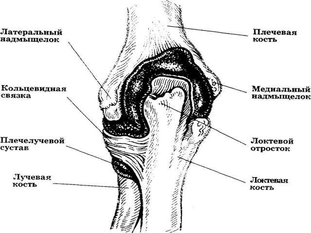 Kasi sorme liite poletik parast vigastuse ravi